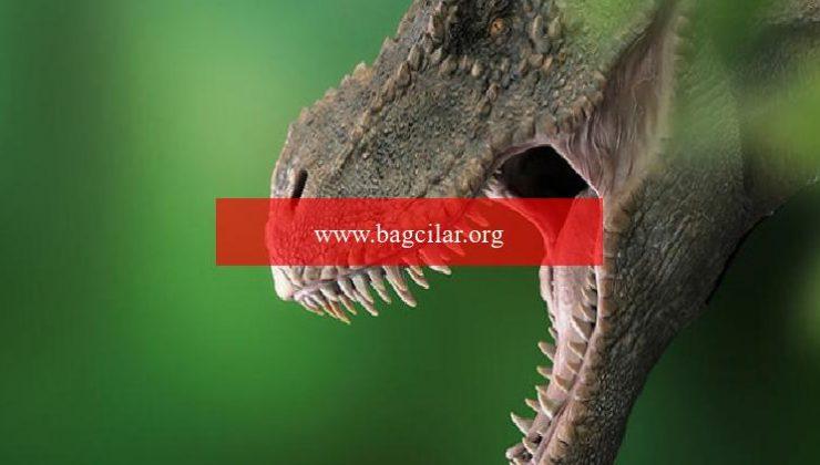 Bilimsel araştırma: Dünyada 2,5 milyar T-rex dinozor tipi yaşadı