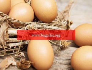YUM-BİR Lideri Afyon: Yumurtaya artırım kelam konusu değil
