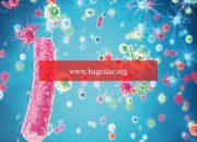 Bulaşıcı olmayan marazların tedavisine Kovid-19 darbesi