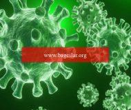 Koronavirüs ne vakit bitecek.. Tarih verdiler.. DSÖ'den heyecanlandıran açıklama