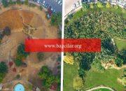 Pakistan'dan 10 kat süratli ağaç yetiştirme kampanyası